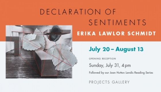 Declaration of Sentiments - Erika Lawlor Schmidt