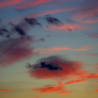 Elemental Perspectives: Land, Sea + Sky