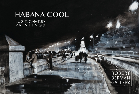 Luis Camejo : HABANA COOL