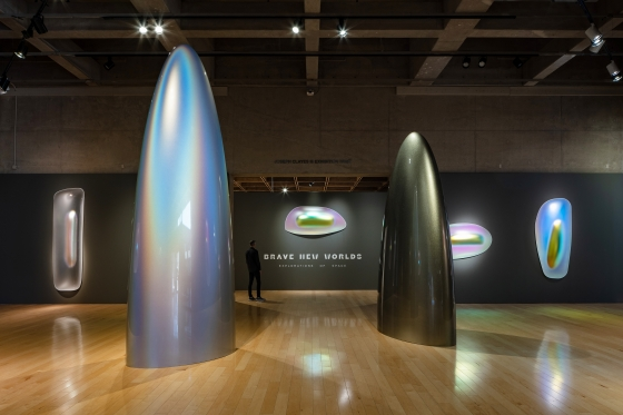 Palm Springs Art Museum exhibition pushes viewers to new vantage points