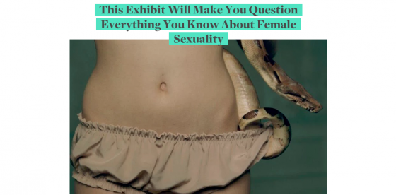 This Exhibit Will Make You Question Everything You Know About Female Sexuality