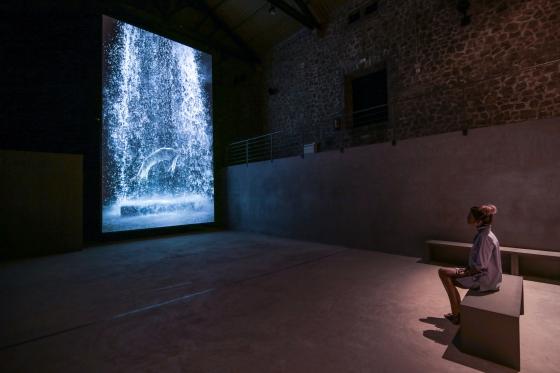 El poeta del videoarte desciende sobre Ibiza
