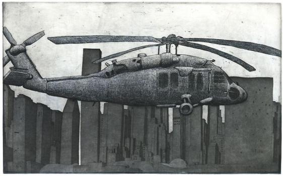 Damon Kowarsky BLACKHAWK, HUDSON 2011 25 X 40 cm.