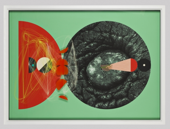 Aditya Pande Half Life Form XII 2012 Mixed media on archival paper 45 x 61 in.