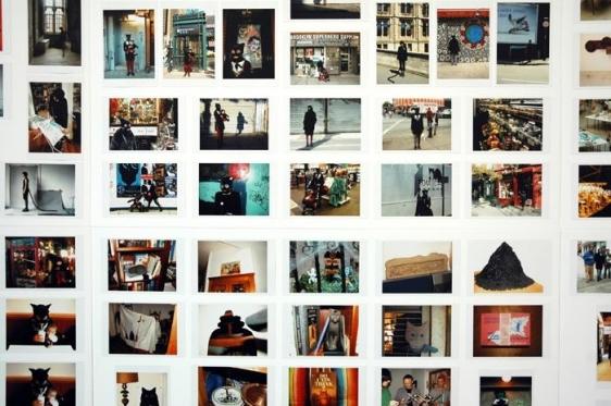 Nazneed Ayyub-Wood THE CAT PROJECT 286 digital c-prints on board 23.5 x 31.5 in. (x12)