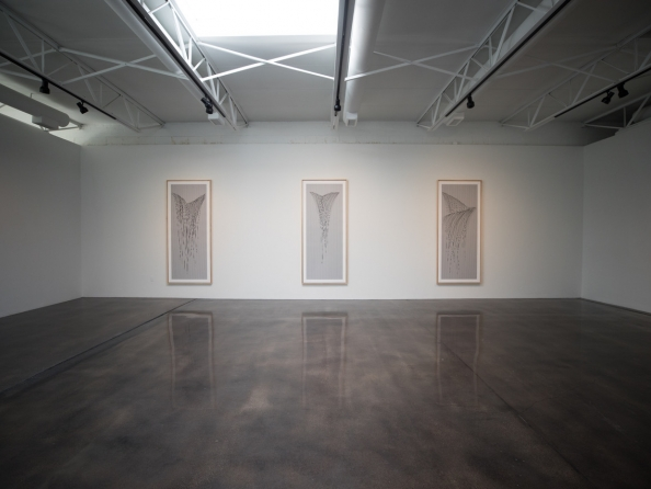 Tom Orr / New Works on Paper