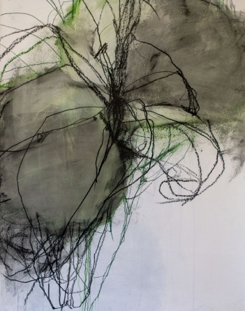 A Selection of Drawings by Andrea Rosenberg