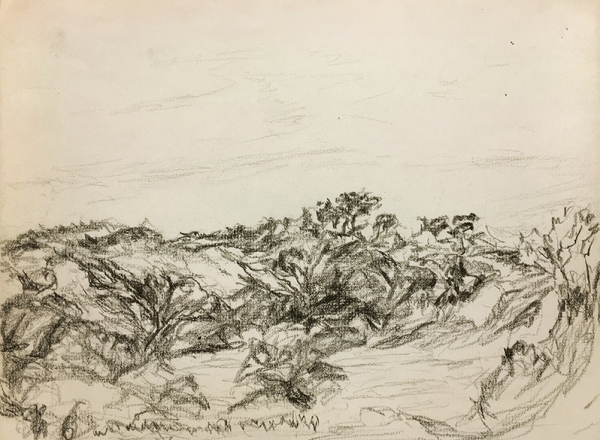 Myron Stout landscape drawing