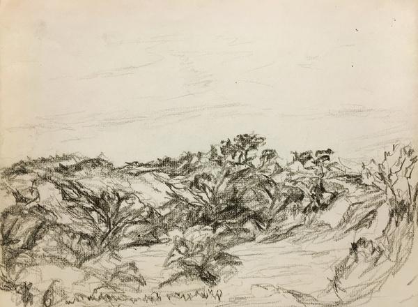 Myron Stout landscape drawing