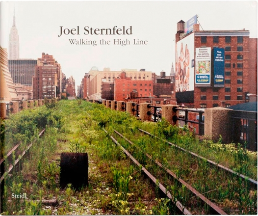 Joel Sternfeld: Walking the Highline