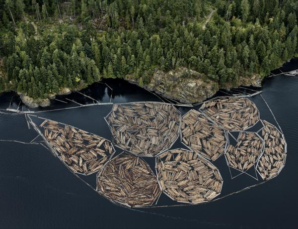 Edward Burtynsky, Log Booms #1, Vancouver Island, British Columbia, Canada, Howard Greenberg gallery, 2019