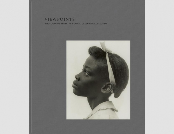 Viewpoints, Howard Greenberg Collection Book