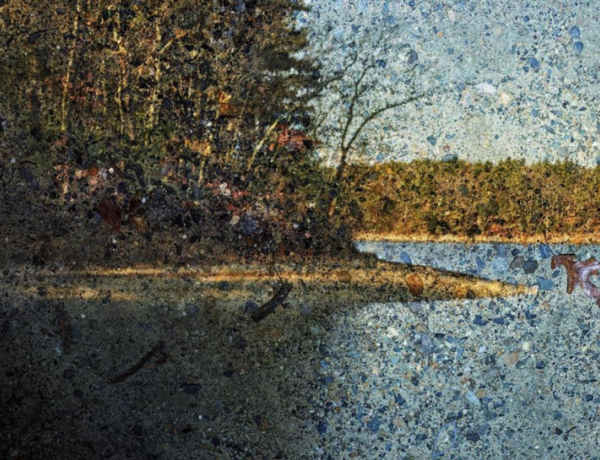 Camera Obscura Images Mark Bicentennial of Thoreau's Birth