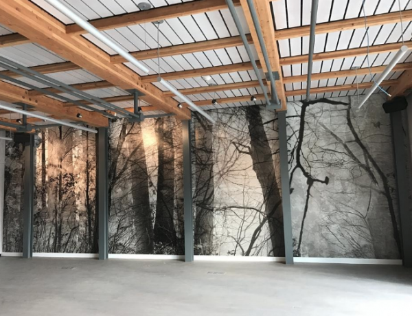 Mural-size 'Walden: Woods and Pond' installed at Concord Museum