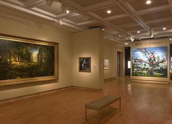 """Installation View, """"Eclectic Ecology,"""" Cummer Museum 2020"""