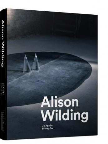Alison Wilding Catalog