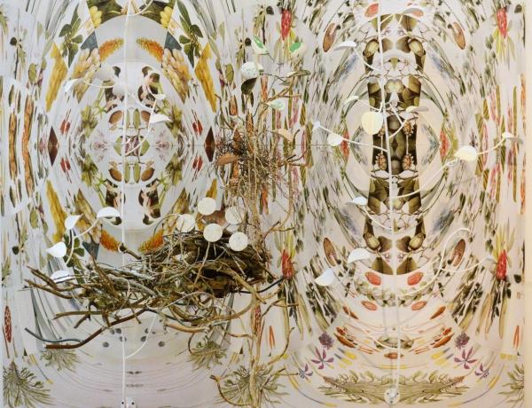 Judy Pfaff + Heidi Howard at Gaa Gallery Provincetown