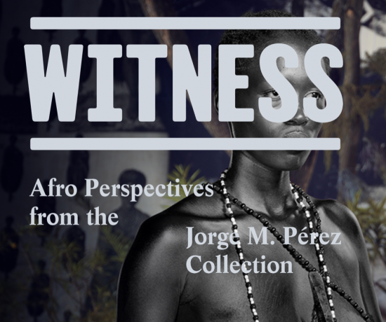 Simphiwe Ndzube in 'Witness: Afro-Perspectives from the Jorge M. Pérez Collection'