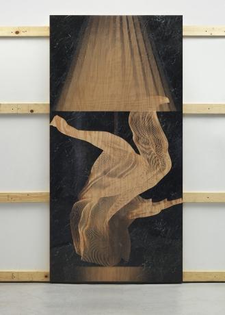 Michael DeLucia at Klaus von Nichtssagend Gallery