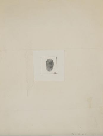 Janine Antoni at Bowdoin College Museum of Art