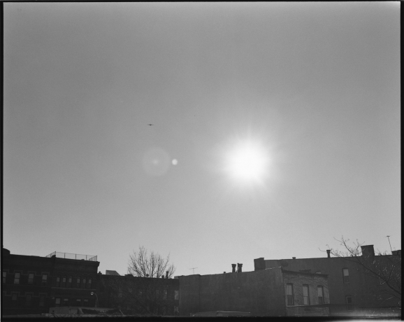 """Zoe Leonard included in """"The Warmth of Other Suns: Stories of Global Displacement"""" at the Phillips Collection"""