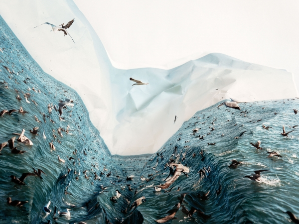 Laura Plageman: Response reviewed by Wired Magazine