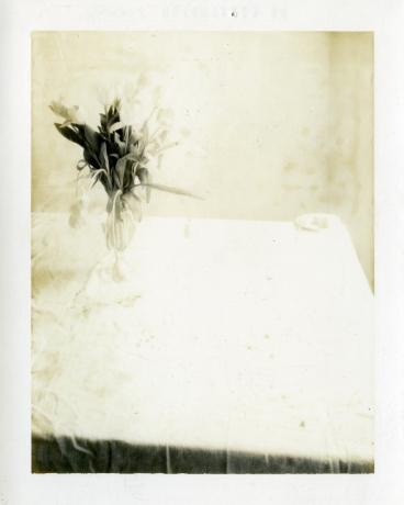 LAURA LETINSKY | MUSĒE DES BEAUX-ARTS LE LOCLE