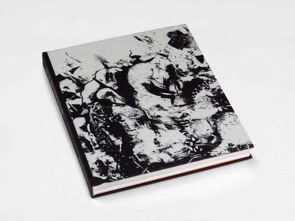 Ali Banisadr: Volume 2 Monograph