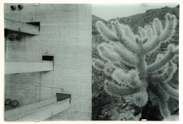 Veronika Kellndorfer at Palm Springs Art Museum