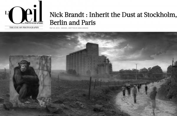 Nick Brandt in L'Oeil de la Photographie