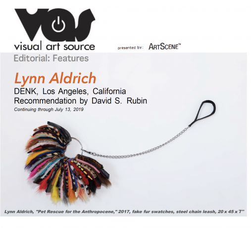Visual Art Source, Editorial: Features - LYNN ALDRICH AT DENK GALLERY