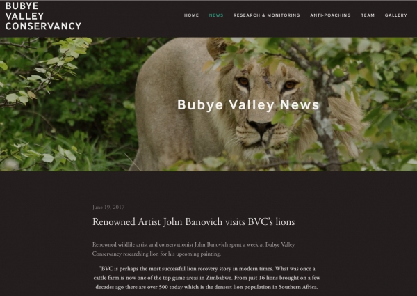 Bubye Valley News-Renowned Artist John Banovich visits BVC's lions