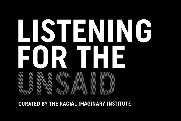 The Racial Imaginary Institute