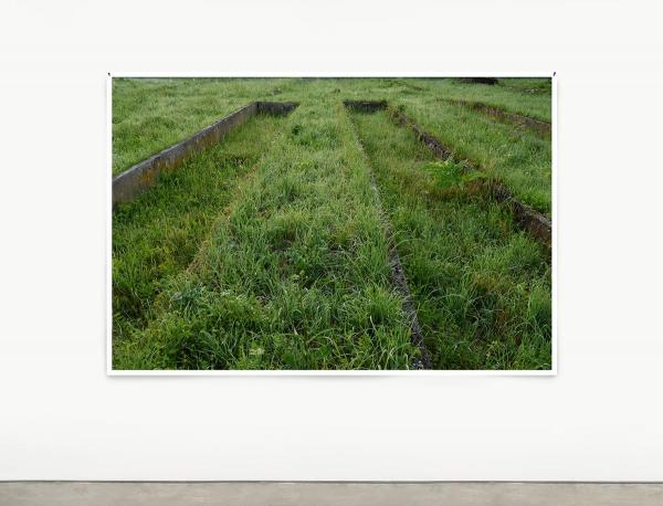 NOW OPEN | ANDREA BÜTTNER: GRIDS, VASES, AND PLANT BEDS