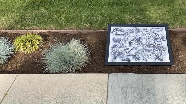 Site-responsive outdoor work by Julie Harrison