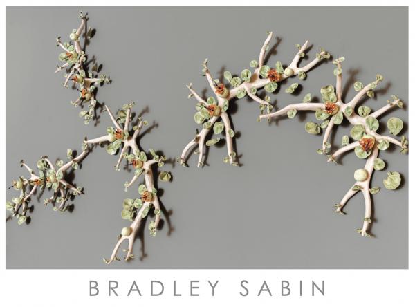 BRADLEY SABIN