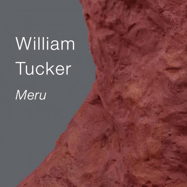 William Tucker: Meru