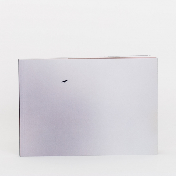 Felix Gonzalez-Torres: America