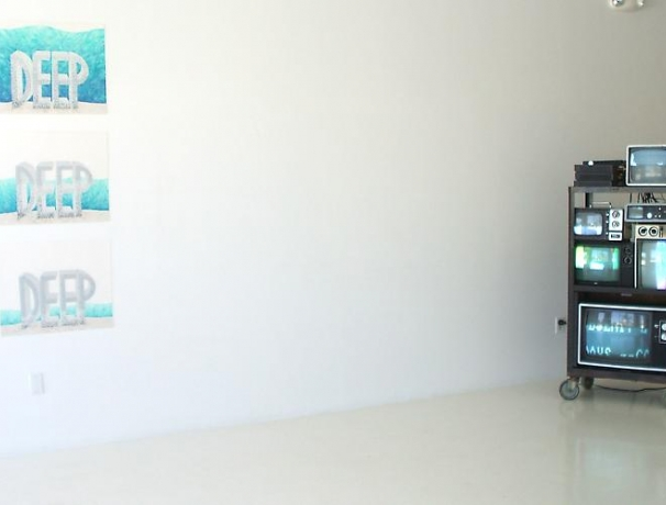 The Second Palm Beach Biennial, 2008