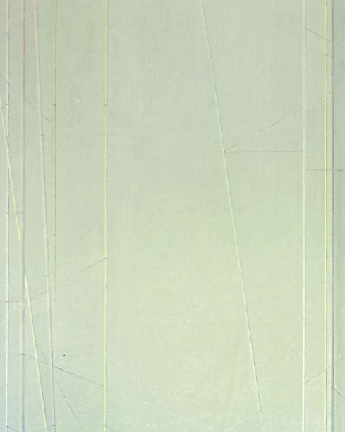 book cover with detail of a painting showing abstracted images of bamboo