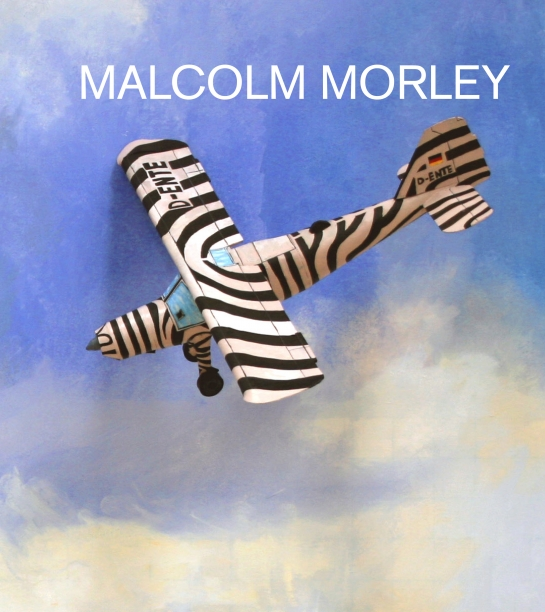 book cover with illustration black and white striped airplane flying against a blue sky with soft clouds below