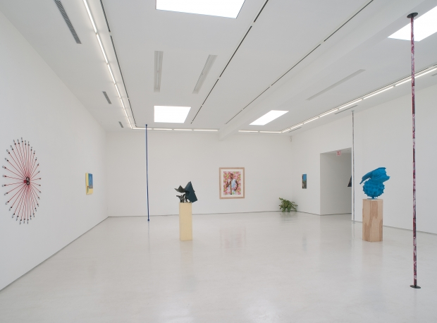 Wild Thing Installation View