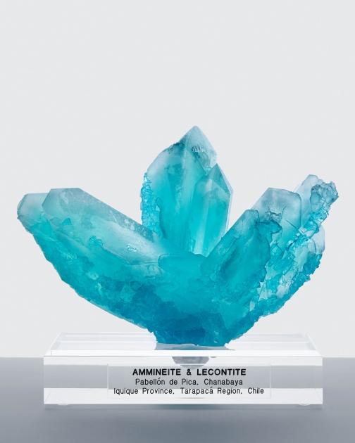 Lecontite and Ammineite