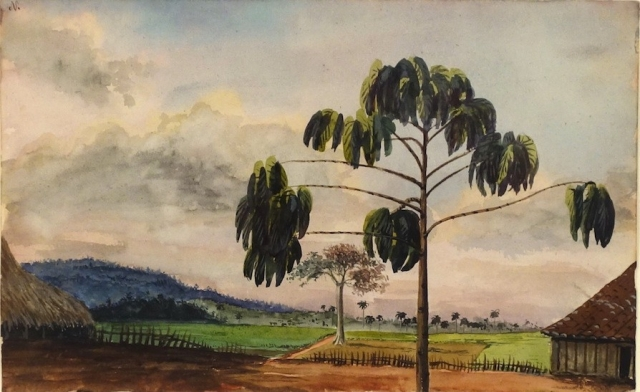 CHARLES DEWOLF BROWNELL Yugo, San Ricardo, Cuba 1857