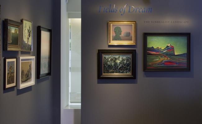 Fields of Dream