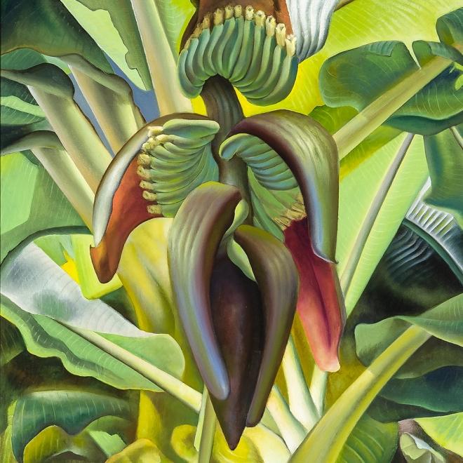 ROSS EUGENE BRAUGHT (1898–1983), Banana Tree, 1937. Oil on canvas, 43 x 43 in. (detail).