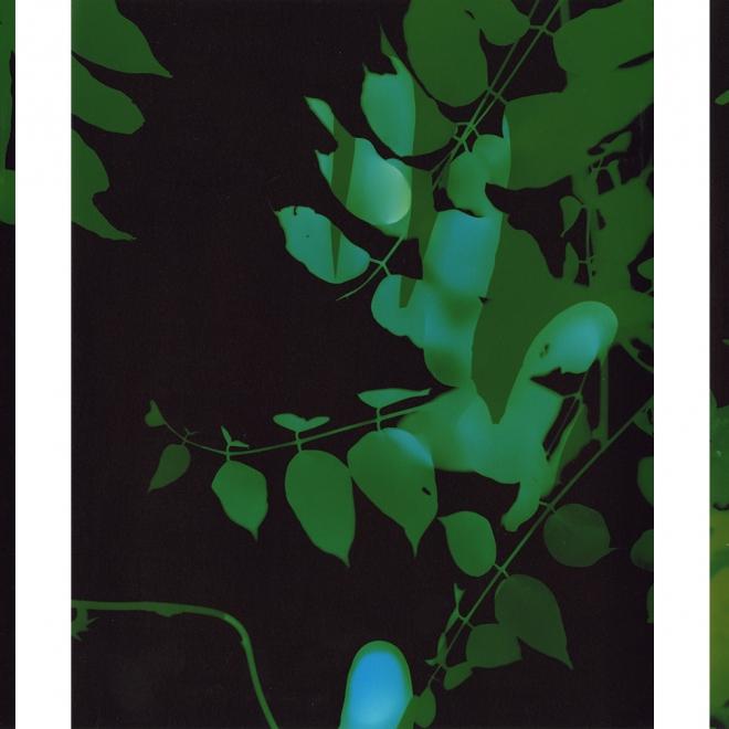 Bryan Graf: Landlines at Atlanta Contemporary Art Center