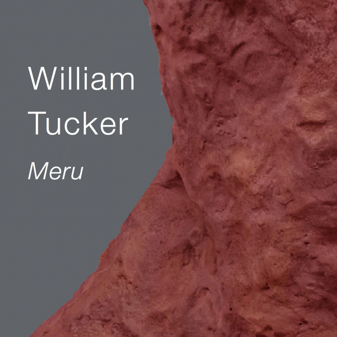 William Tucker: Meru