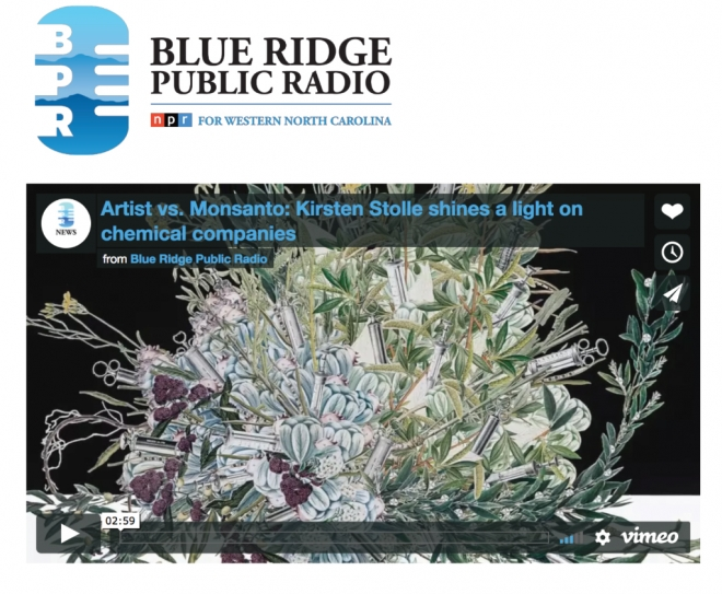 Kirsten Stolle on Blue Ridge Public Radio
