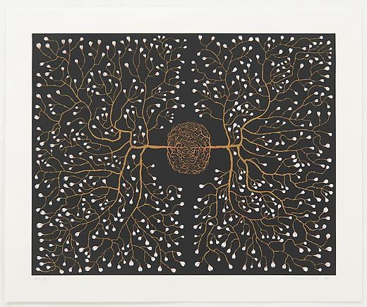 FRED TOMASELLI: 562 eyes in self-surveillance